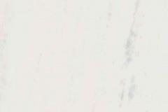 white-pollaris